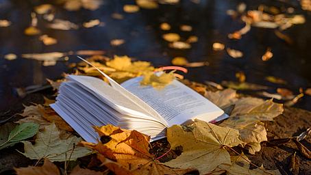 Herbstzeit ist Bildungszeit